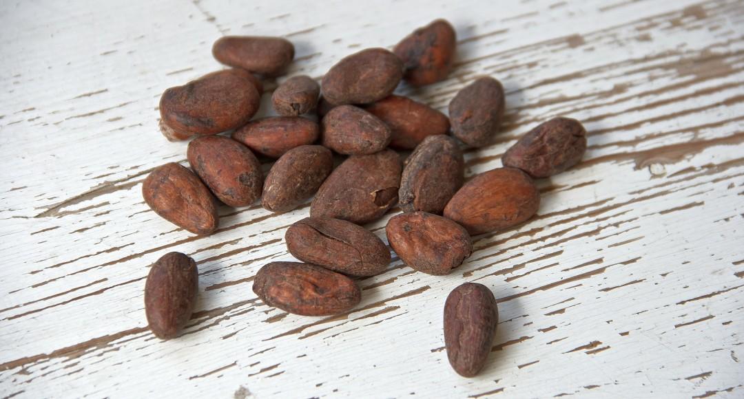 cocoa-bean-1282894_1920-1080x580